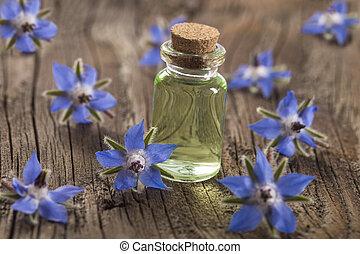 Borage oil Borago Officinalis on wooden background