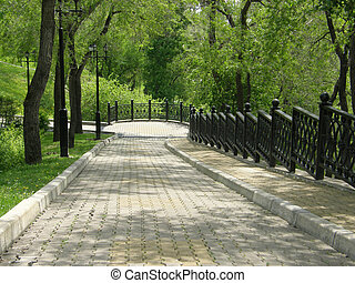 The path in the park near the Amur River. Khabarovsk. Far...