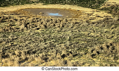Drought. Slowly drying pond in steppe, where there was...