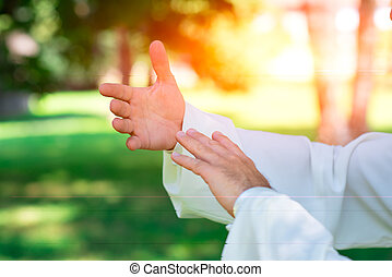 Tai chi chuan hands - practice of Tai Chi Chuan in the park....