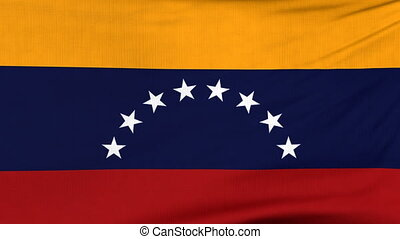 National flag of Venezuela flying on the wind - National...