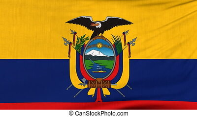 National flag of Ecuador flying on the wind