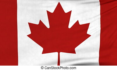 National flag of Canada flying on the wind - National flag...