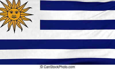 National flag of Uruguay flying on the wind - National flag...