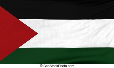 National flag of Palestine flying on the wind