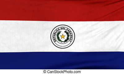 National flag of Paraguay flying on the wind