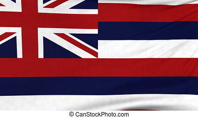 National flag of Hawaii flying on the wind