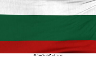 National flag of Bulgaria flying on the wind