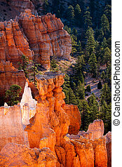 Glowing Hoodoos in Bryce Canyon