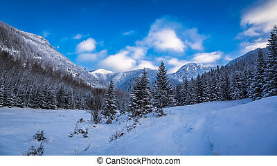 Panorama of snowy mountain path in winter
