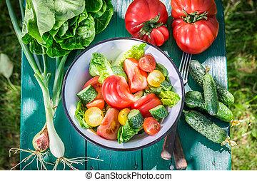 Fresh vegetarian salad in sunny day
