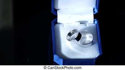 Wedding rings in a dark blue velvet etui.