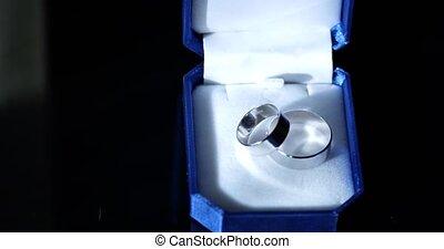 Wedding rings in a dark blue velvet etui.