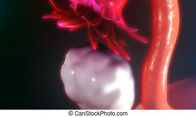 Ovary - a female reproductive organ in which ova or eggs are...