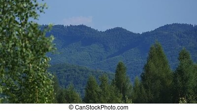 Mountains in the Carpathians. - Mountains in the Carpathians...
