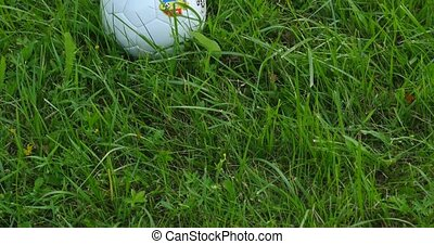 white soccer ball on green grass