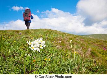 Woman with tourist knapsack on mountain