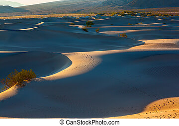 Deep morning shadows between the dunes - Smooth slopes of...