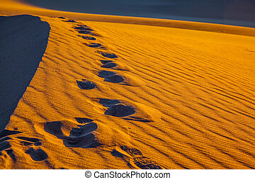 Sandy Desert in Mesquite Flat. Along the edge of the sand...
