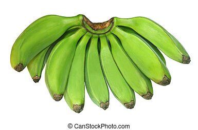 Plantain - Green banana or plantain on white background