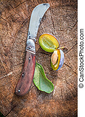 Little old penknife and fresh plums