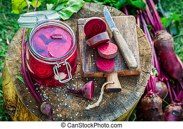 Ingredients for pickling beetroots