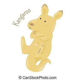 Kangaroo isolated on white background - Kangaroo isolated on...