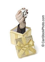 Keybox - Eine Hand komt aus einer Geschenkebox heraus
