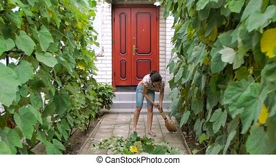 woman cleans up in the yard - young woman cleans up in the...