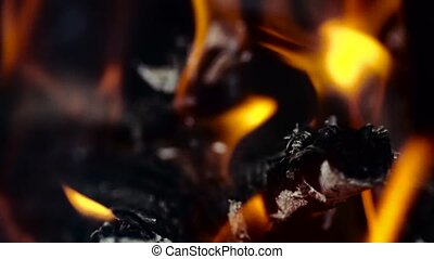 Bright burning wood, campfire macro video. slow motion