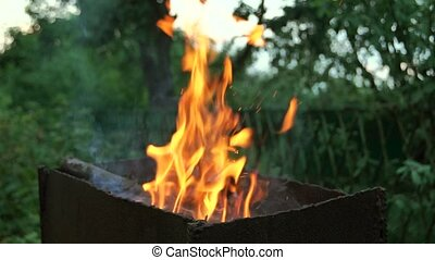 Bright burning wood in the grill , the fire. slow motion