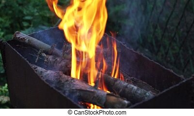 Bright burning wood in the grill , the fire slow motion