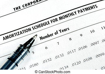 Calculate the loan payment by checking the amortization...