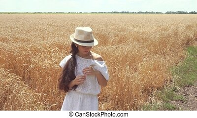 woman in white dress standing in field holding wheat ears -...