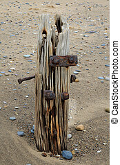 Wooden groynes on the beach at spurn point