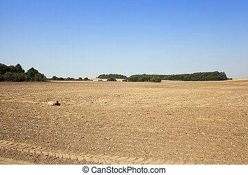 plowed land, summer - plowed land in the agricultural field...
