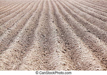 plowed field, furrows - plowed agricultural field in which...