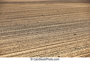 empty agricultural field - part of an agricultural field...