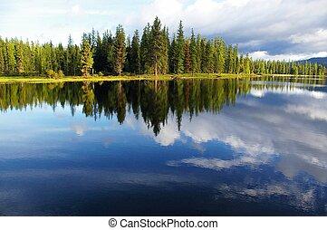 Lakeshore Reflection