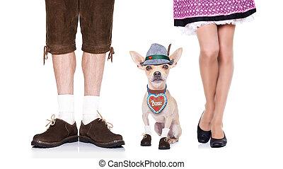 bavarian beer dog - bavarian german chihuahua dog with bag...