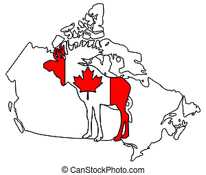 Canadian moose