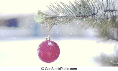 Red Christmas ball on tree loop - Red Christmas ball on tree...