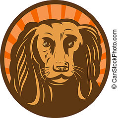 Cocker spaniel head front view with sunburst in background set inside an oval