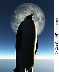 Penguin and moon
