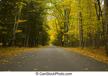 Potawatomi Park Byway - Photo of tree-lined roadway through...