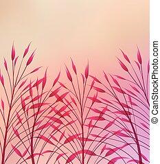 Vector meadow grass