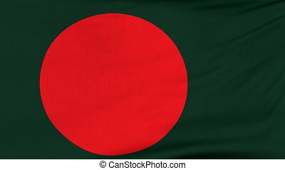 National flag of Bangladesh flying on the wind