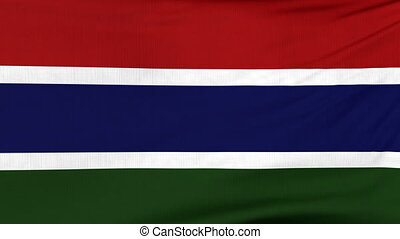 National flag of Gambia flying on the wind