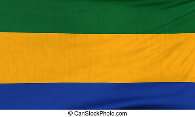 National flag of Gabon flying on the wind