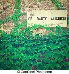 Street Sign on the Vine-covered Wall in the Italian City,...